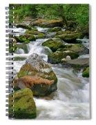 Slate Creek, Nez Perce National Forest, Idaho Spiral Notebook