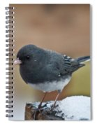 Slate Junco Feeding In Snow Spiral Notebook