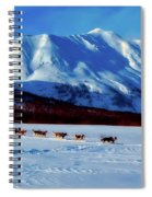 Sledding In Russia Spiral Notebook
