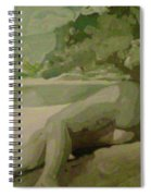 Sleep Behind The River Spiral Notebook