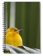Sleep Little One Spiral Notebook
