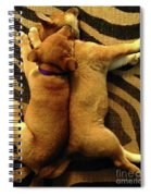 Sleeping Babies Spiral Notebook