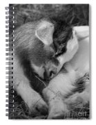 Sleeping Baby, Black And White Spiral Notebook