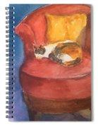 Sleeping Calico Spiral Notebook