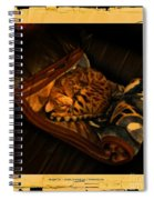 Sleeping Cat Digital Painting Spiral Notebook
