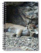 Sleeping Cat Spiral Notebook