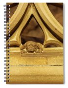 Sleeping Dog In Strasbourg Cathedral Spiral Notebook