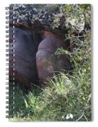 Sleeping In The Jungle - Stone Face In Forest Spiral Notebook