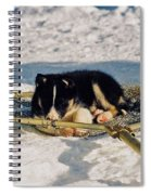 Sleeping Puppy Spiral Notebook