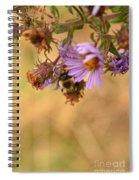 Sleepy Bee On New England Aster Vertical Spiral Notebook