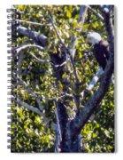 Sleepy Eagle Spiral Notebook