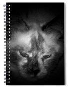 Sleepy Head Spiral Notebook