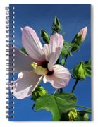 Sleepy Hibiscus Spiral Notebook