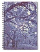 Sleepy Hollow's Muse Spiral Notebook
