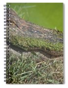 Sleepy Papa Gator Spiral Notebook