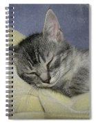 Sleepy Time Spiral Notebook