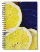 Slices Spiral Notebook