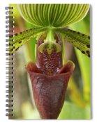 Slipper Orchid Spiral Notebook