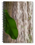 Slow Motion Tropical Waterfall Spiral Notebook