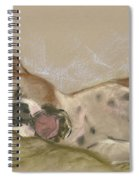 Slumbering Grace Spiral Notebook