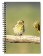 Small And Large Spiral Notebook