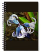Small And Lovely Spiral Notebook