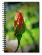 Small Beginnings Spiral Notebook