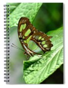 Small Green Spiral Notebook