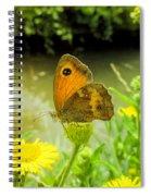 Small Heath Butterfly Spiral Notebook