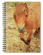 Small Horse Large Beauty Spiral Notebook