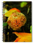 Small Mushroom In Autumn Spiral Notebook