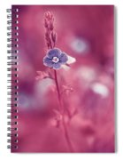 Small Romantic Violet Flower Spiral Notebook