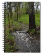 Small Stream In The Woods Spiral Notebook