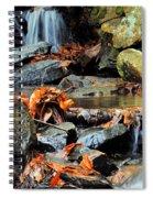 Small Stream Spiral Notebook