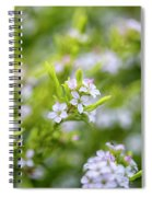 Small White Flowers Spiral Notebook