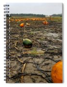 Smashing Pumpkins Spiral Notebook