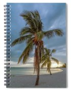 Smathers Beach Coconut Sunset Spiral Notebook