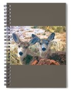 Smidgeon And Rudi 2 Spiral Notebook