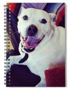 Smilies Spiral Notebook