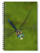 Smiling Dragonfly Spiral Notebook
