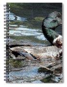 Smiling Duck Spiral Notebook