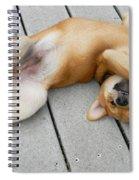 Smiling Puppie Spiral Notebook
