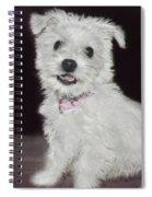 Smiling Puppy Spiral Notebook