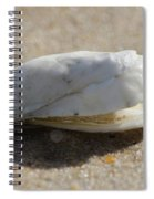 Smiling Shell Spiral Notebook