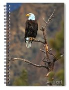 Smith Rock Bald Eagle Spiral Notebook