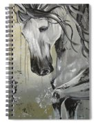 Smoke And Ash Spiral Notebook