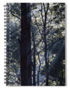 Smoke In The Air Spiral Notebook