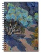 Smoke Tree In La Quinta Cove Spiral Notebook