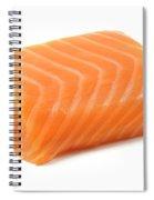 Smoked Salmon Fillet Spiral Notebook