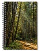 Smokey Forest Spiral Notebook